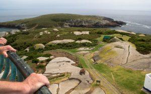 Montague Island view lighthouse