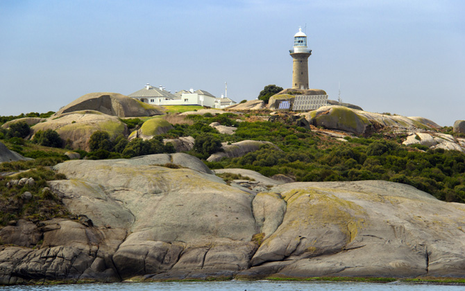 Montague-Island-waterview