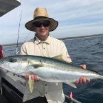 narooma king fish