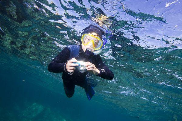 snorkel photo new